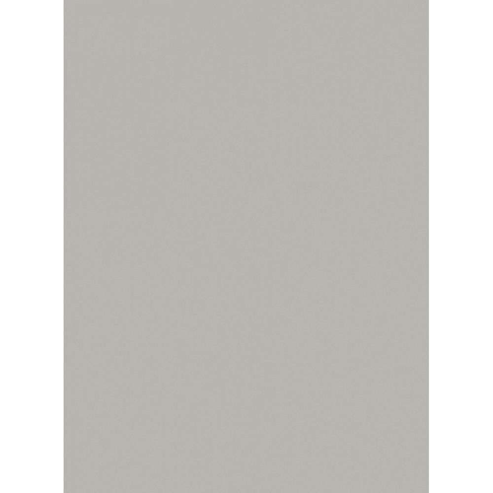Corian Silver Gray